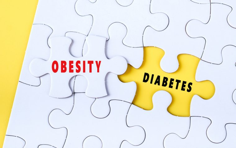 Twin Study: Obesity Increases Risk of Diabetes But Not Heart Attack